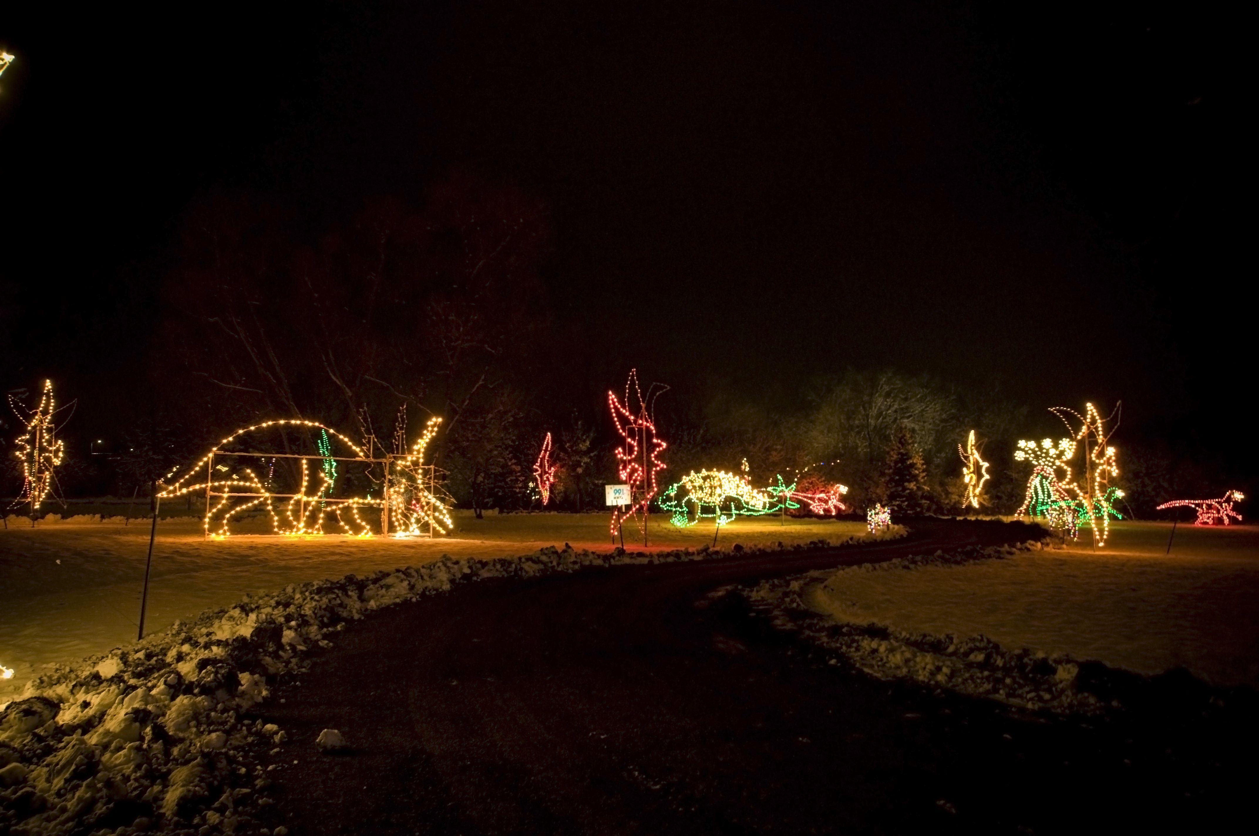 Dinosaur Christmas Lights Display at Country Christmas