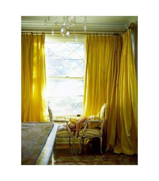 enveloped in yellow