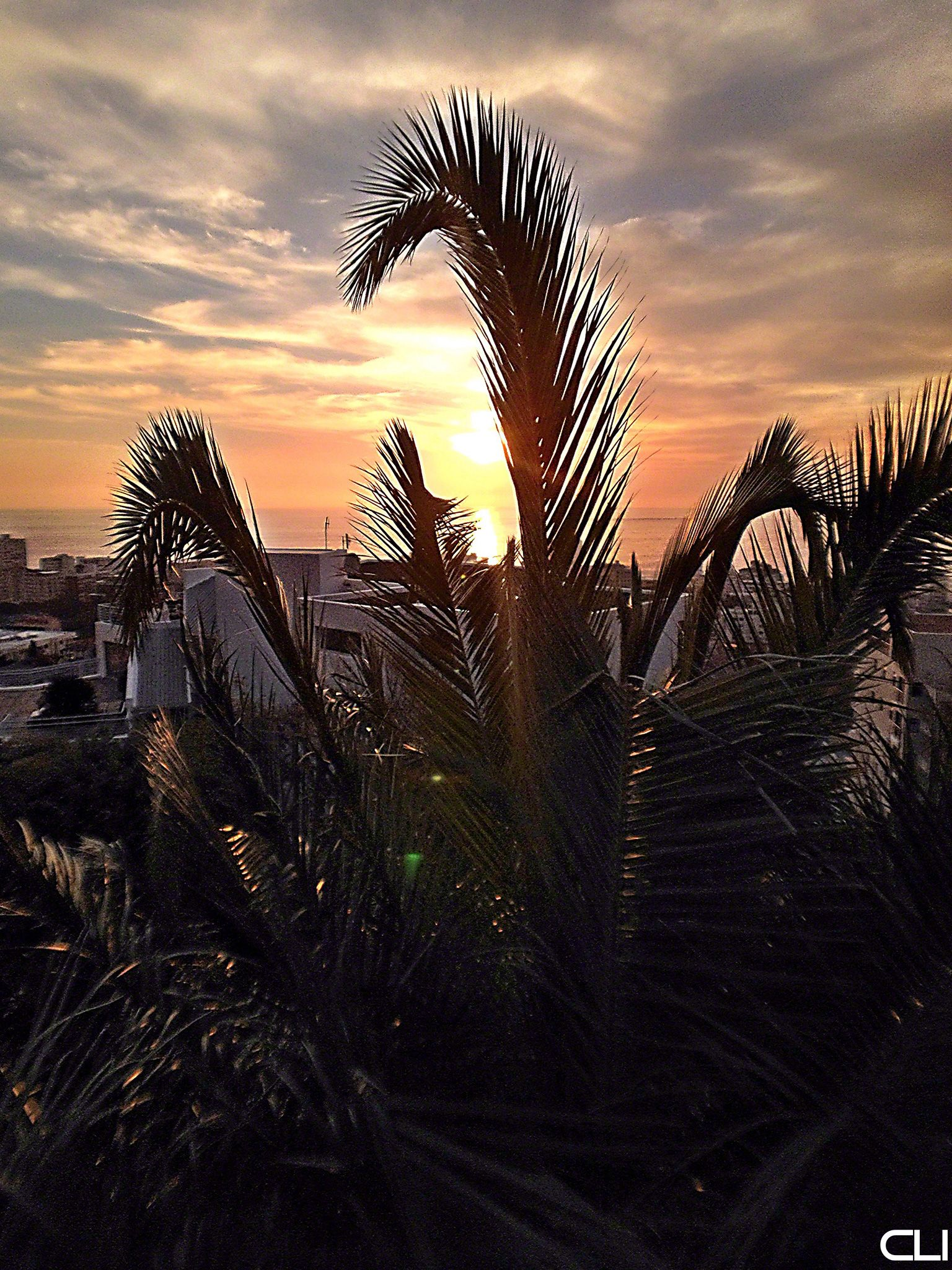 overlooking Sea Point, Cape Town