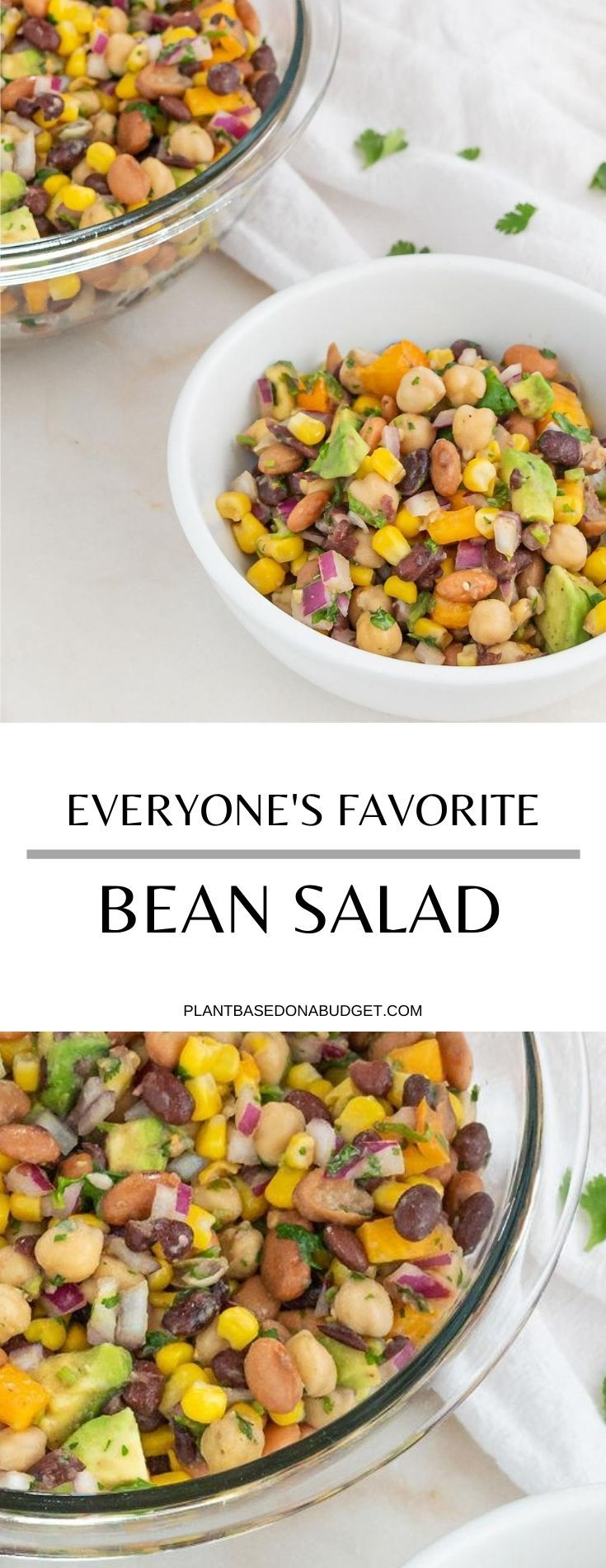 Everyone S Favorite Bean Salad Recipe In 2020 Bean Salad Recipes Vegan Recipes Easy