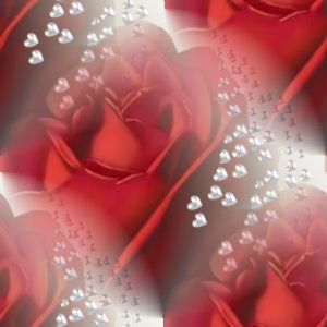 Red Rose Fantasy Lovely Picture And Wallpaper