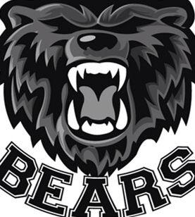 Houston County High School The Bears Awesome School In Warner Robins Georgia Mascot Bear Temporary Tattoos