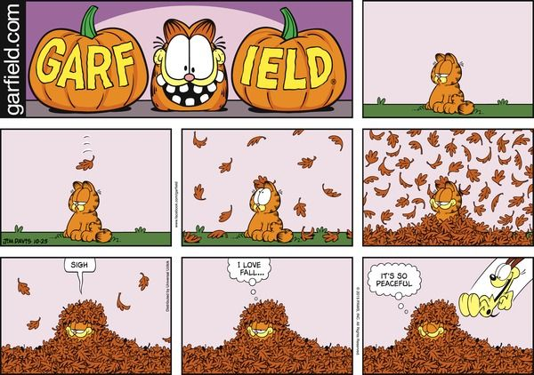 Garfield By Jim Davis For October 25 2015 Gocomics Com Garfield Comics Comics Garfield Cartoon