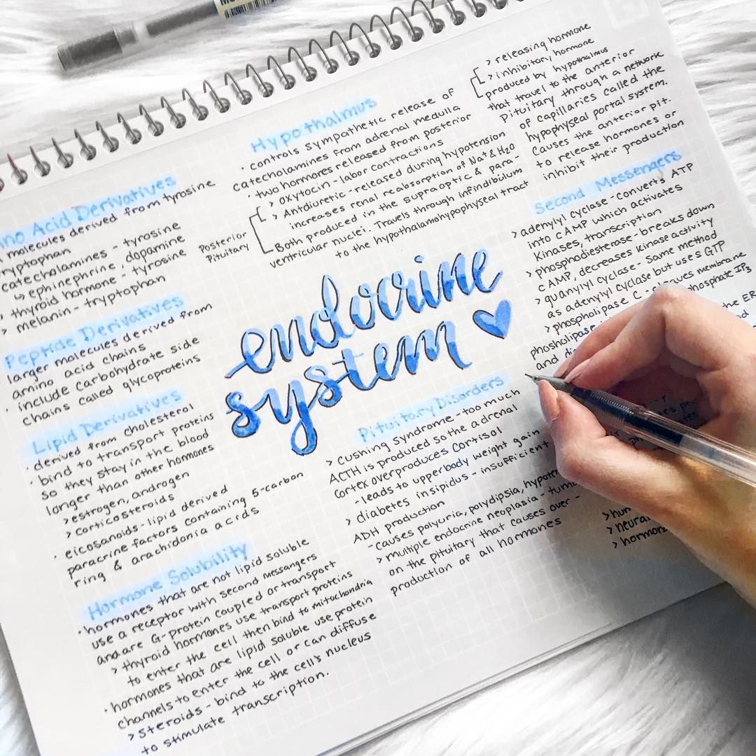 Beautiful In Blue Endocrine System Study Notes