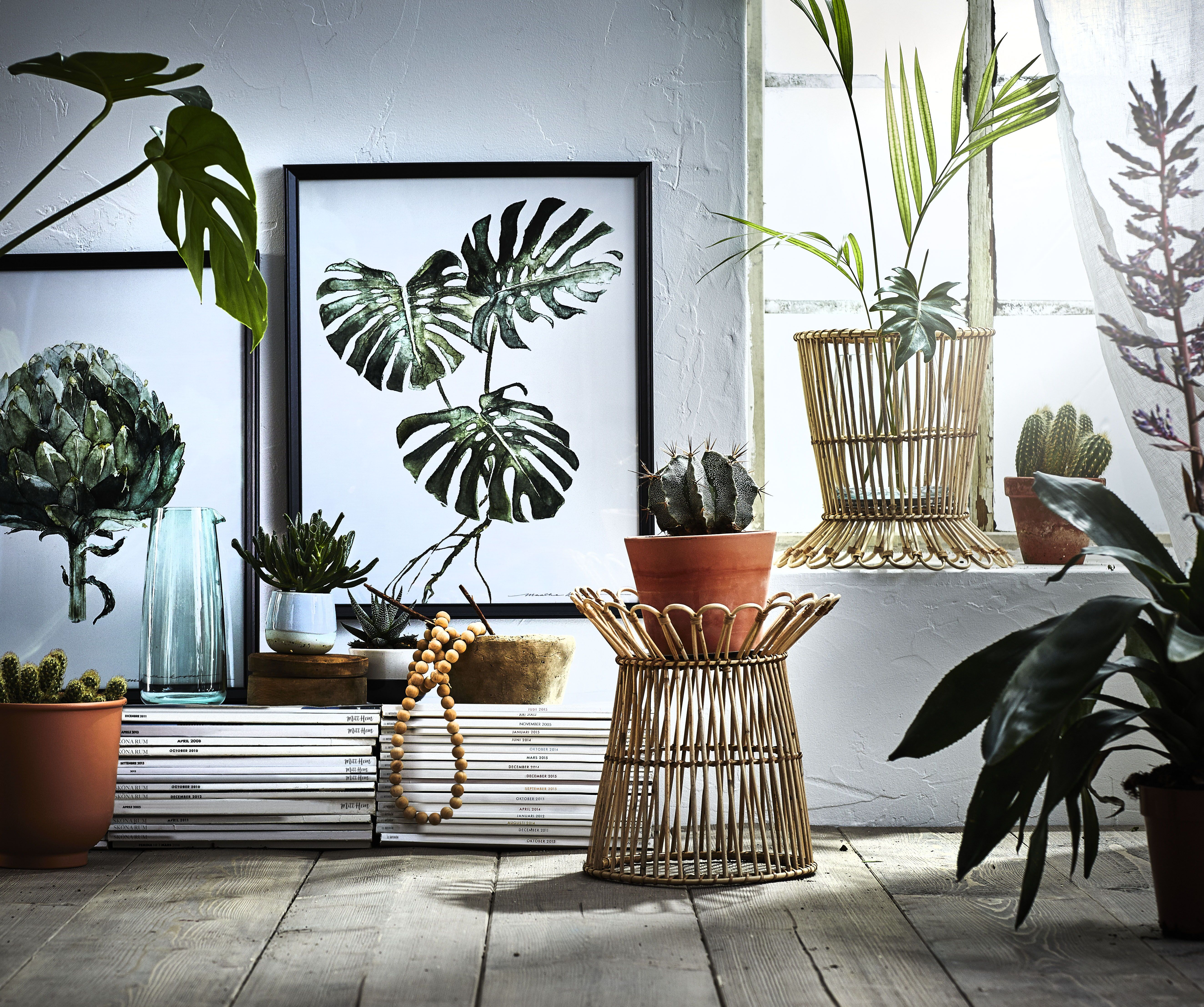 Kanelstang Plantenstandaard Rotan In 2018 Home Ikea Decoration