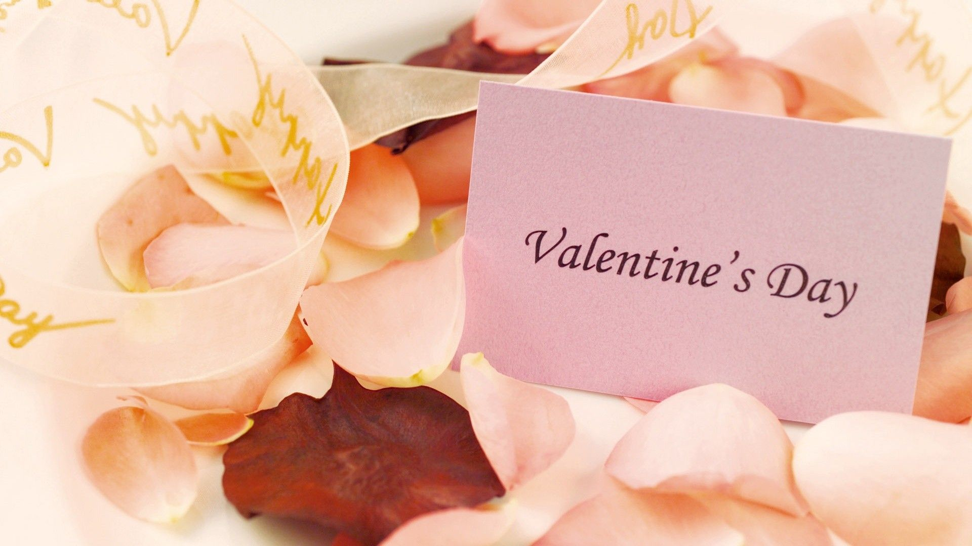 Valentines Day Cards Ideas Holiday February 14th