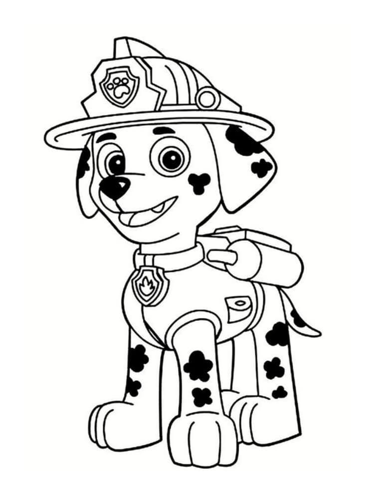 Paw Patrol Malvorlagen 30 Zeichnungen Zum Kostenlosen Ausdrucken Ausdrucken Kostenlosen Mal In 2020 Ausmalbilder Paw Patrol Ausmalbilder Ausmalbilder Zum Ausdrucken