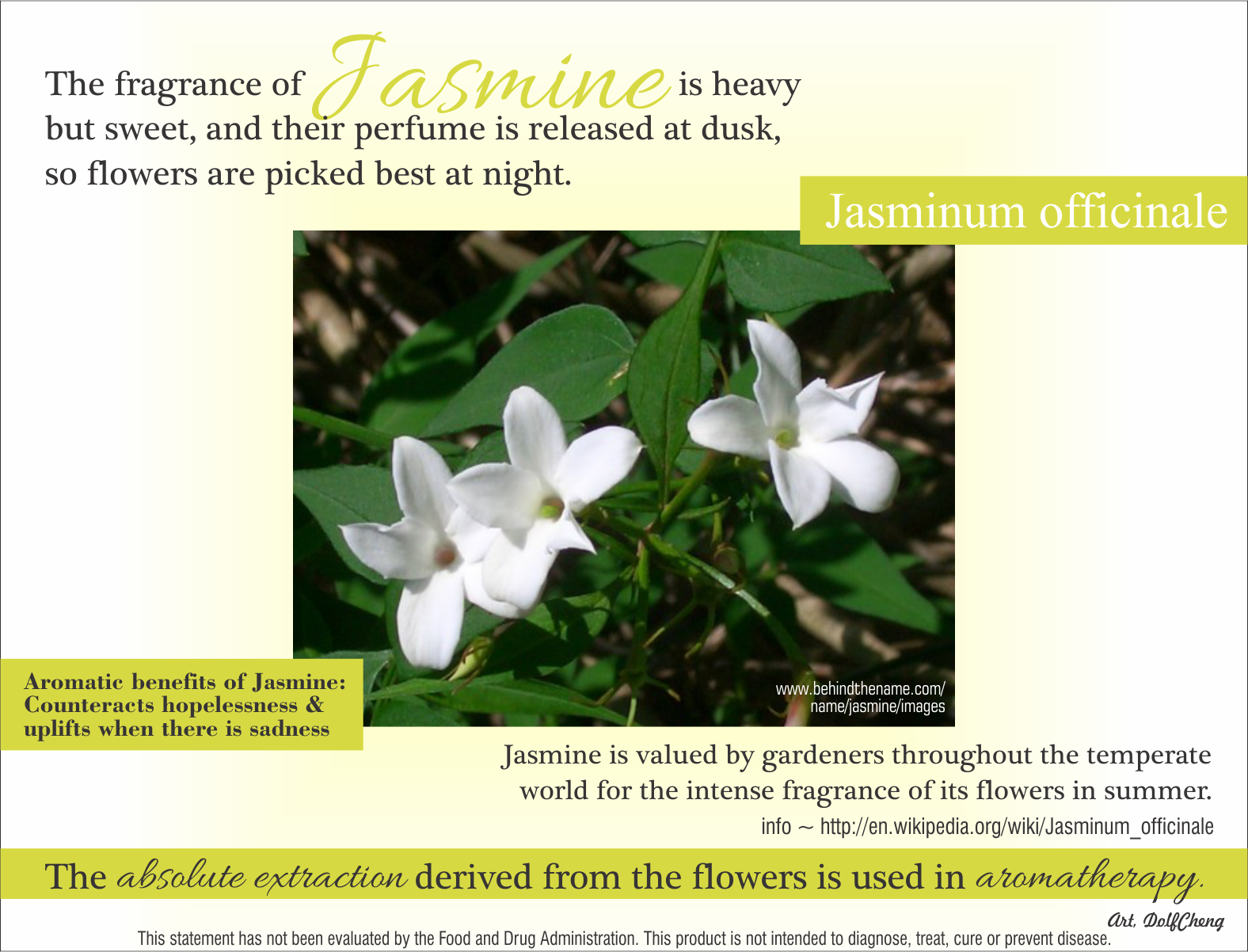 A Little Information About Jasmine It Is Actually A Absolute