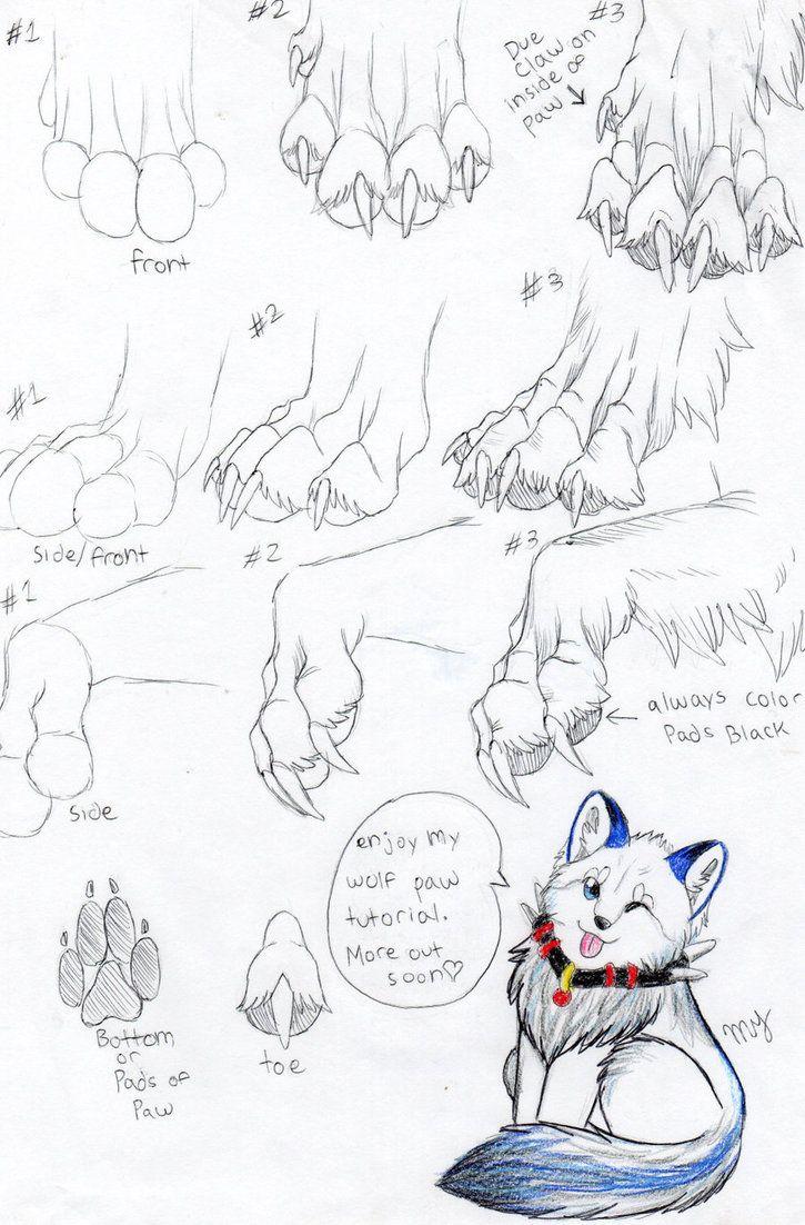 How To Draw Wolf Paws : Félicitations, Votre, Domaine, été, Créé, Drawing,, Sketch,