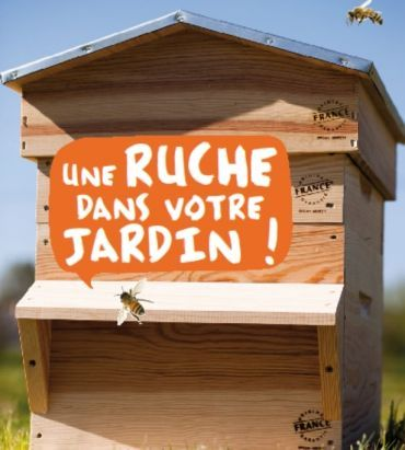 installer une ruche dans son jardin conseils et astuces bioaddict projets pinterest. Black Bedroom Furniture Sets. Home Design Ideas