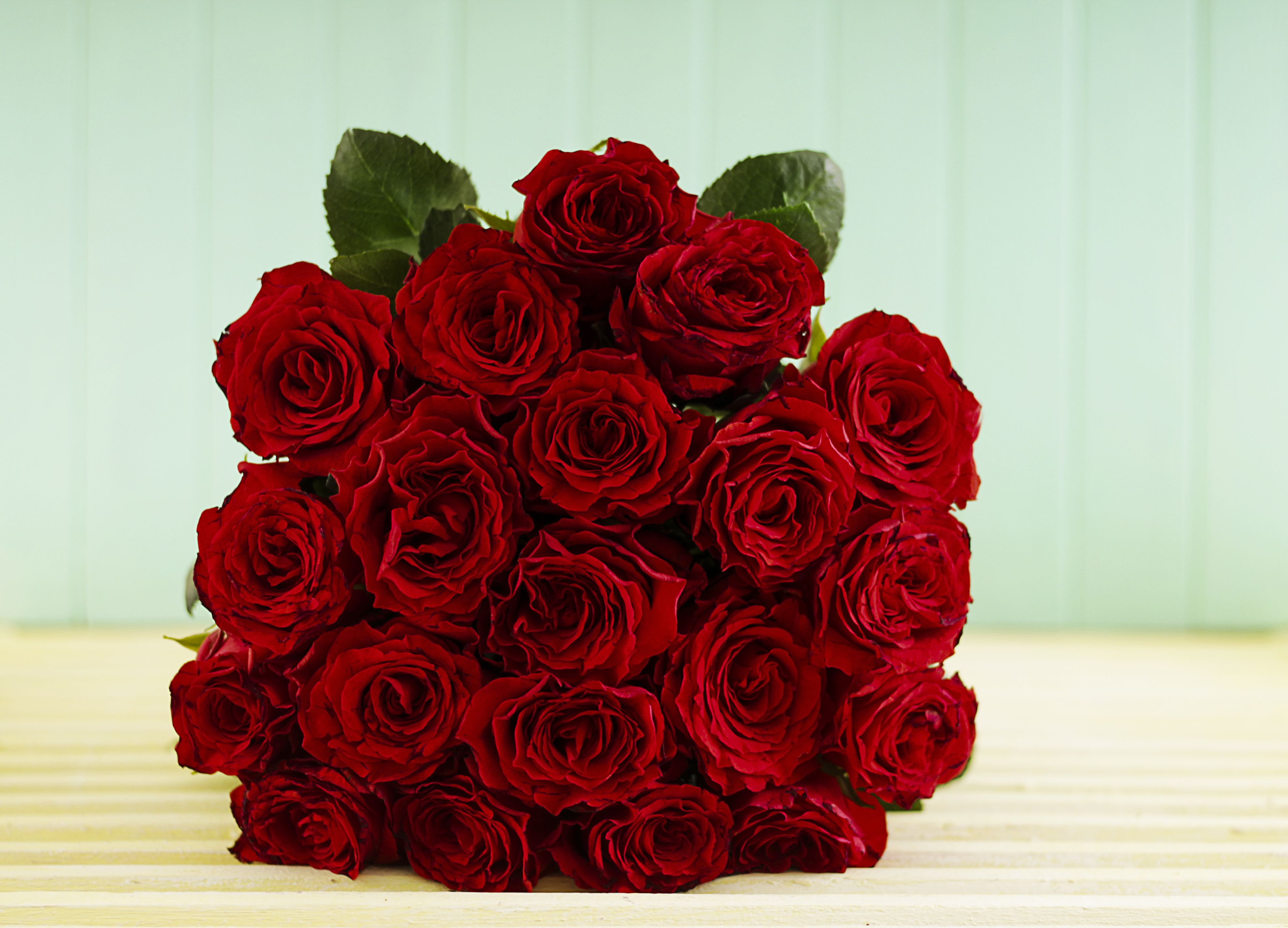 Red Ethiopian Roses Flower Delivery Flower Delivery Service Rose