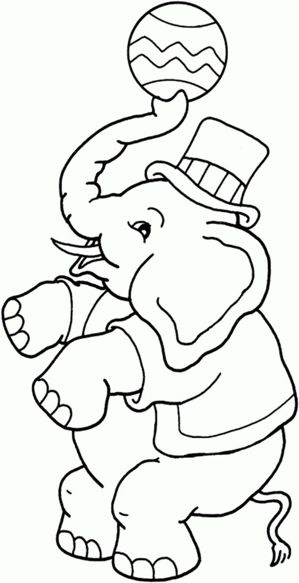 Circus Coloring Pages Elephant Boy Free Printable