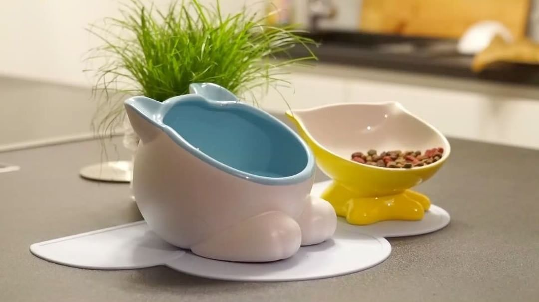 Cat toys assorted vivipet q bowls and big head water