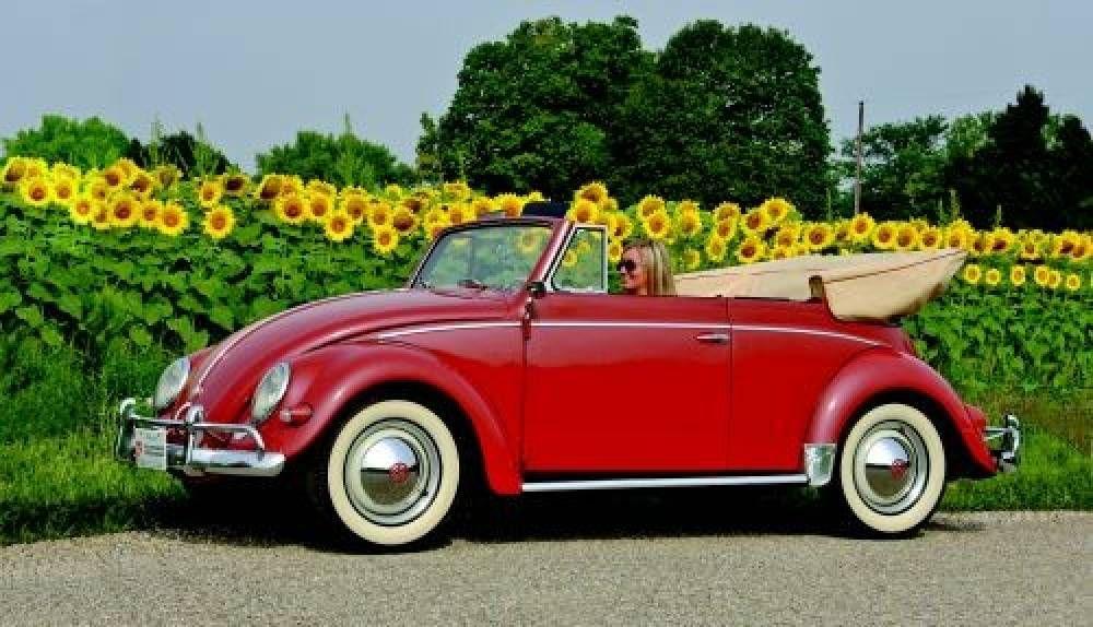 1954-\'60 Volkswagen Convertible | Hemmings Motor News | VW ...