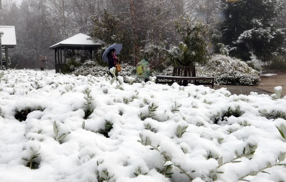 Australia in bianco: la più grande nevicata degli ultimi 30 anni