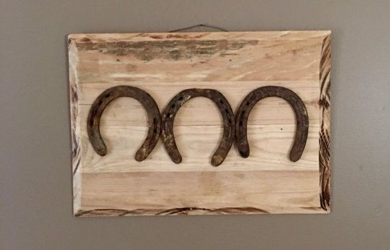Rustic Horseshoe wall hanging