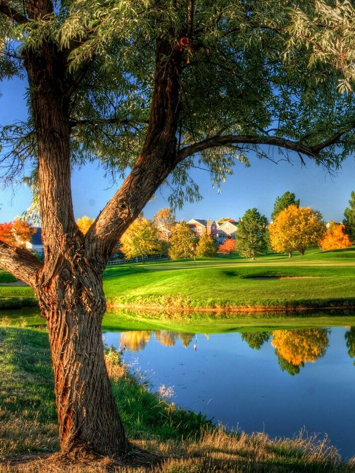 Nature image by Itz heer on Wallpapers Golf tips for