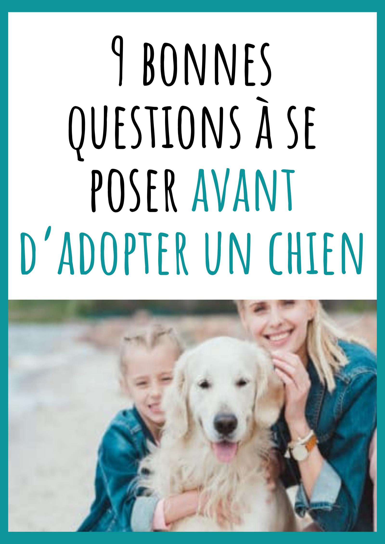 Adopter un chien, cela veut aussi dire avoir de nouvelles responsabilités et être prêt(e) à faire des sacrifices.