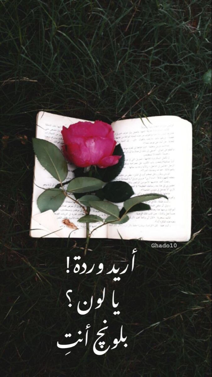 Pin By ل ـحن ڪـلاسيڪـي ᴳᴴ ꮙʝթ On حچي عراقي Photo Ideas Girl Photo Book Cover