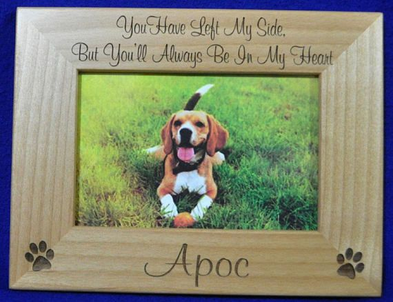 Pin by Phyllis Meyer on Pet Loss | Pinterest | Pet loss, Pet ...