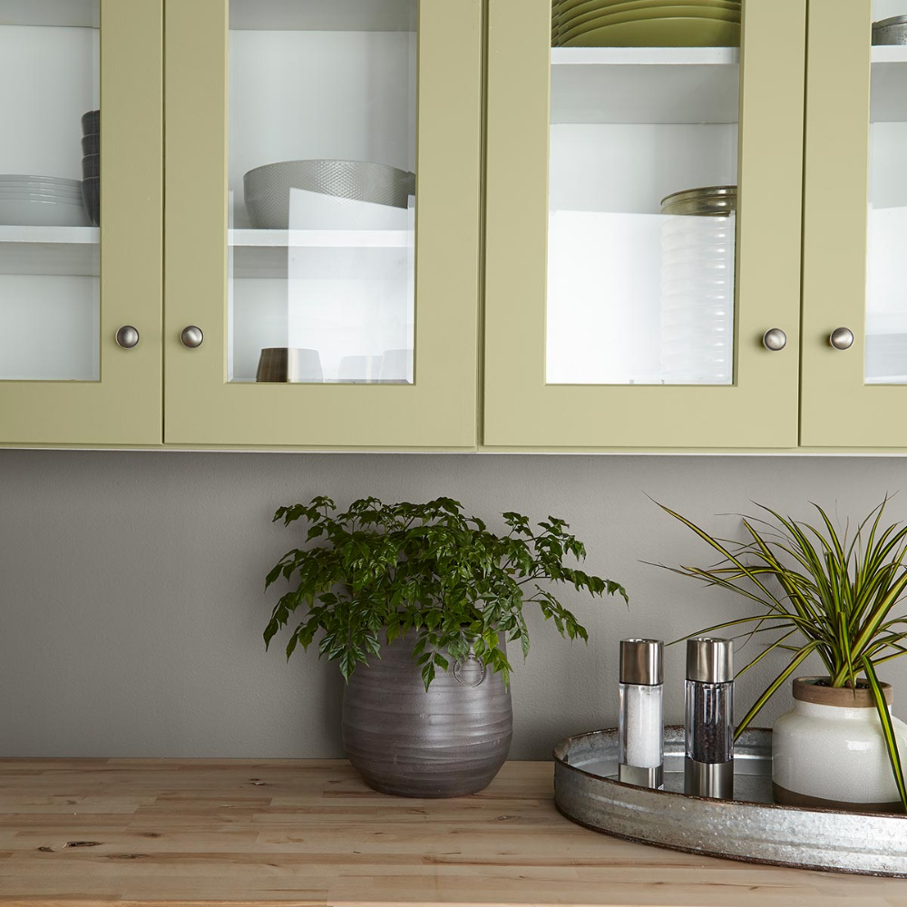 Color of the Year 2020 | Back to Nature | Behr Paint (With ...