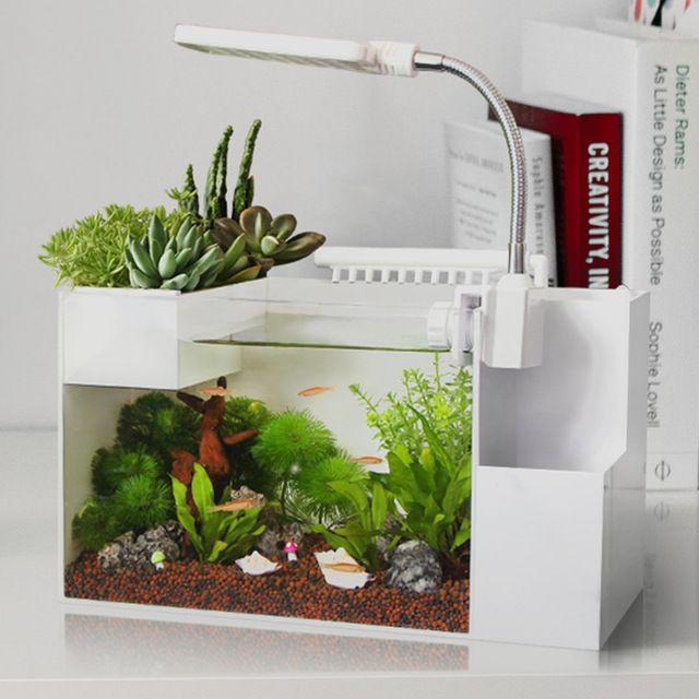 Pin By Lina Liew On Small Fish Aquarium Ideas Aquaponics Fish Indoor Aquaponics Aquaponics