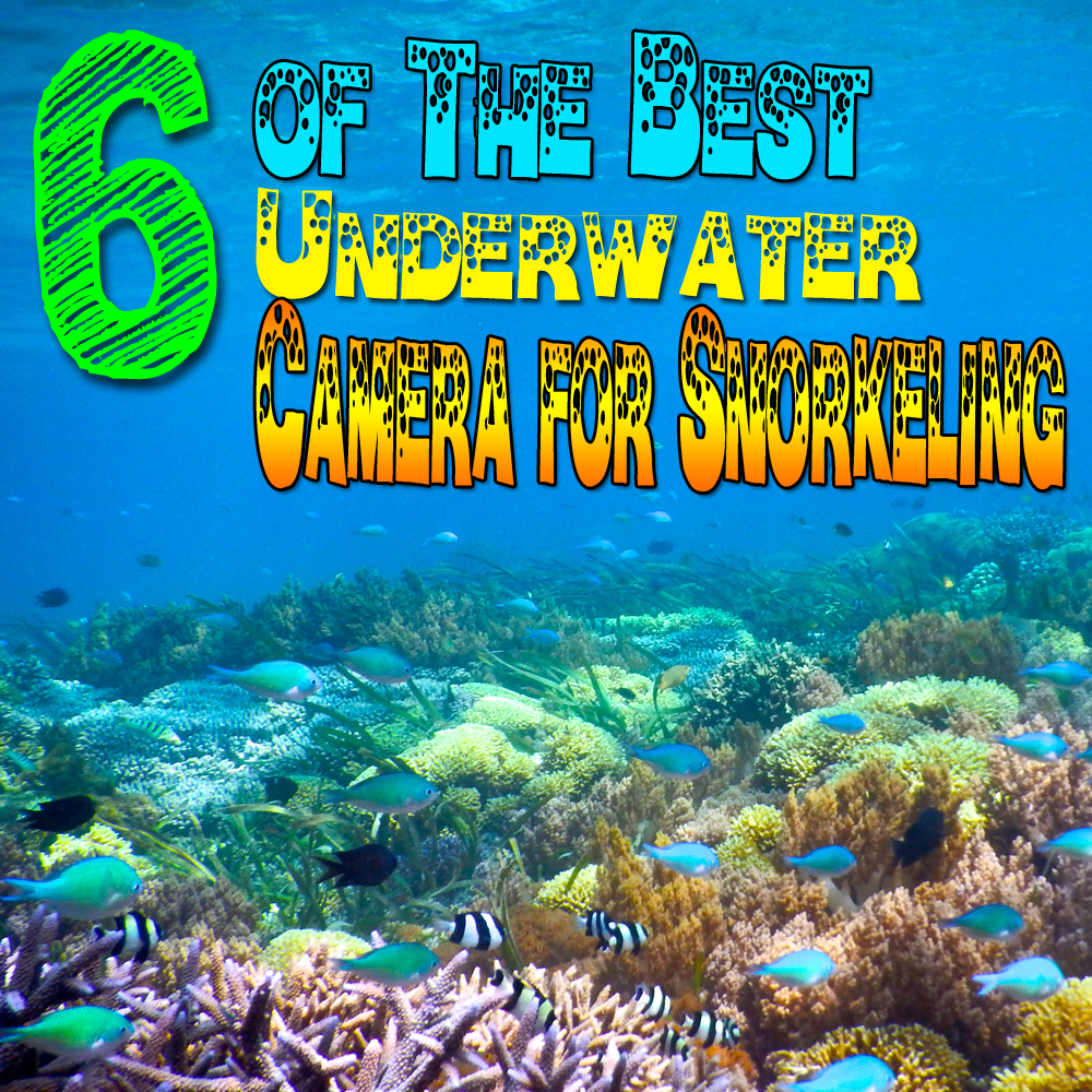 Best Underwater Camera For Snorkeling 2017 Lizzys Faves