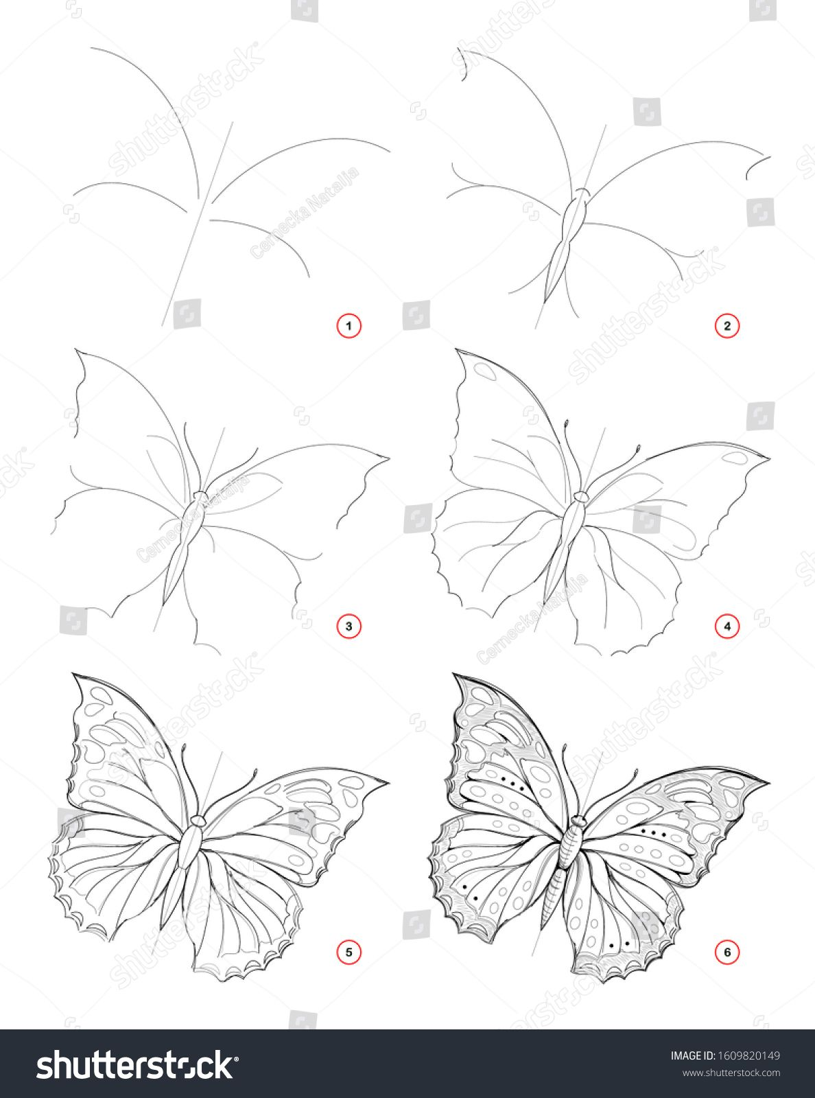 How To Draw Sketch Of Beautiful Fantastic Butterfly Creation Step