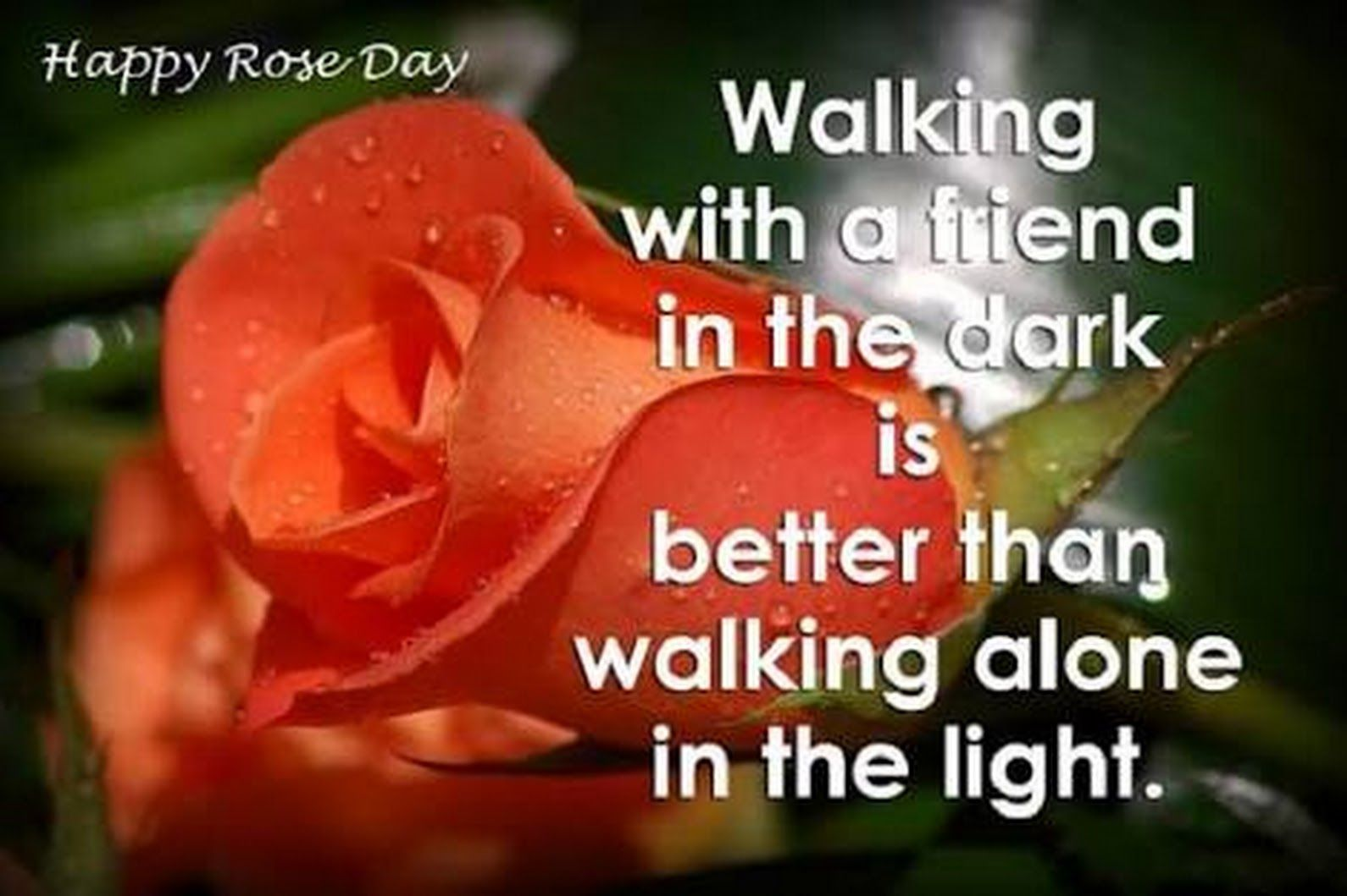 Sign In Happy Rose Day Wallpaper Good Morning Quotes Friends Quotes Friendship rose day images for friends