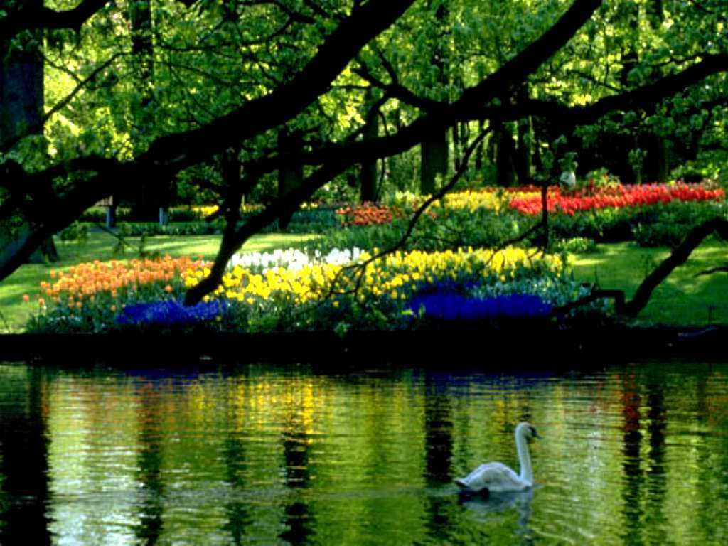 Spring Scenery Wallpaper For Computer Free Download Spring Scenery Spring Scene Free Spring Wallpaper