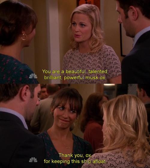 Leslie and ann heterosexual define
