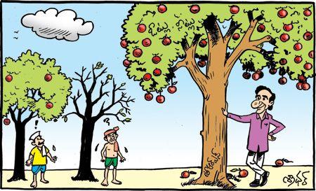 Eenadu - Funny cartoon pics | lkanduri,upenderk,vivekreddye | Funny