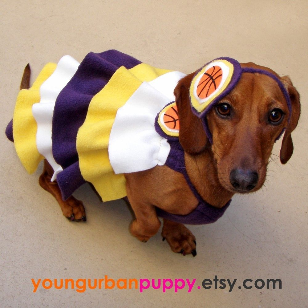 Lakers Sports Inspired Ultra Ruffle Cheerleading Dress For Etsy Crusoe The Celebrity Dachshund Dachshund Cheerleading Outfits