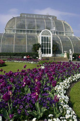 Real Jardín Botánico en Kew. La colección de plantas más grande del ...