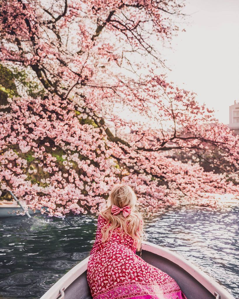 The Best Cherry Blossom Locations In Tokyo Charlies Wanderings Places In Tokyo Instagrammable Places Cherry Blossom Japan