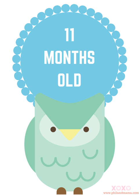 Remarkable Animal Themed Baby Monthly Milestone Sign 11 Months Old Interior Design Ideas Lukepblogthenellocom