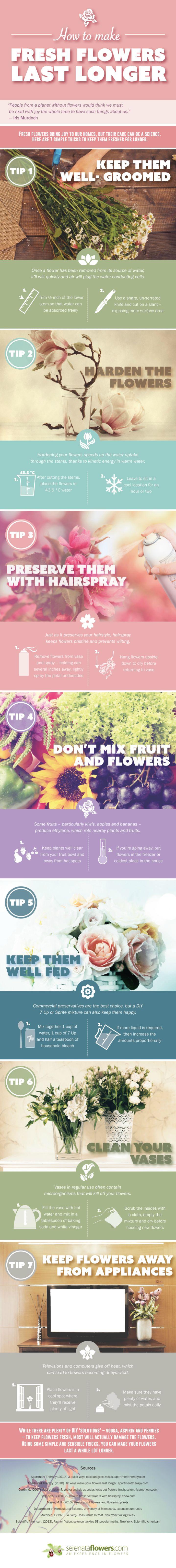 How to make fresh flowers last longer infographic latest how to make fresh flowers last longer infographic howto flowers izmirmasajfo