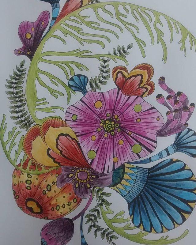 #botanicalwonderland #rachelreinertstudio #rachelreinert #adultcolouringbook #inktense