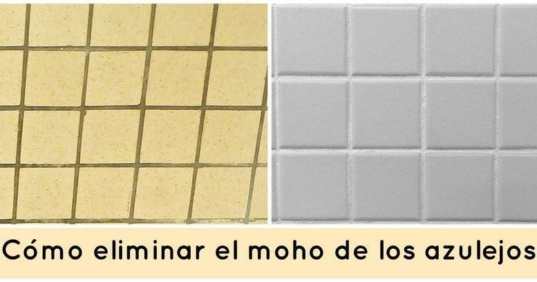 C mo eliminar el moho de los azulejos del ba o limpieza y orden - Limpiar azulejos bano moho ...
