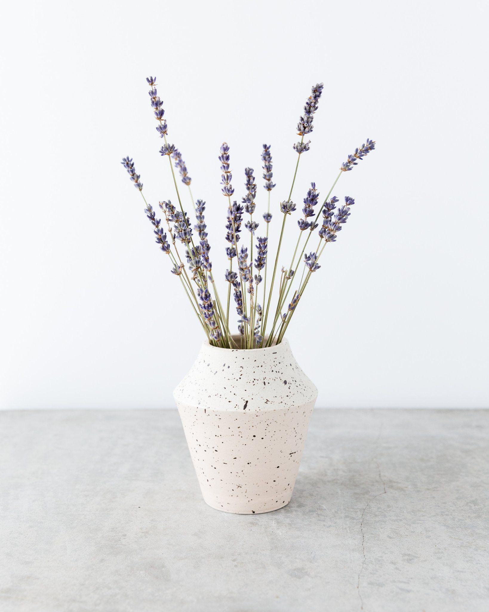 Mérida Anderson Medium Angular Speckled Vase in Blush and Natural