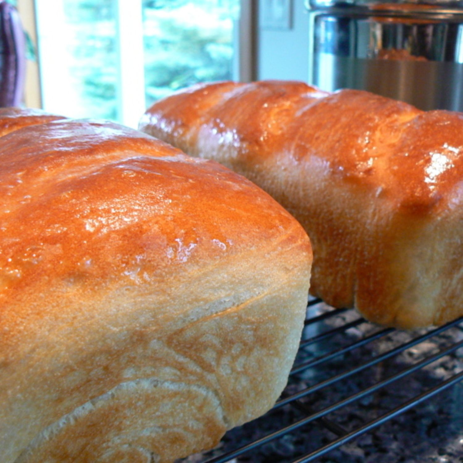 Sourdough Bread Sourdough Bread Recipe Bread Sourdough Bread