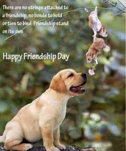 Image result for happy friendship day animals