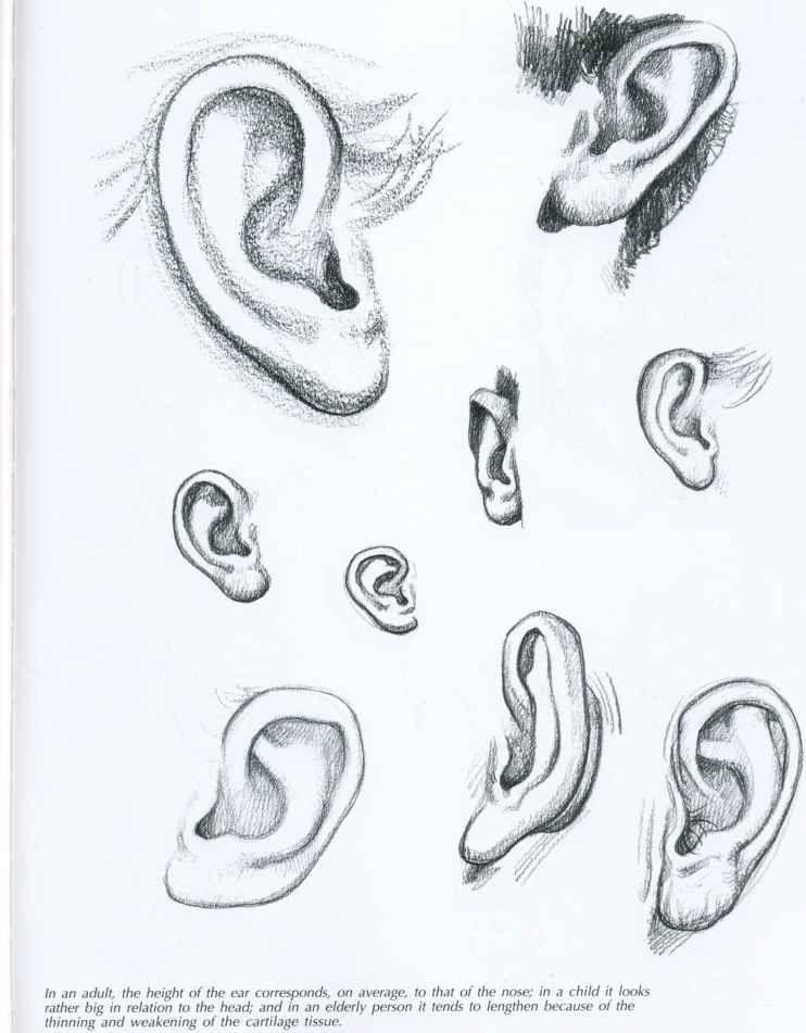 Ear Drawing | Trying To Art. | Pinterest | Vistas, Dibujo y Anatomía