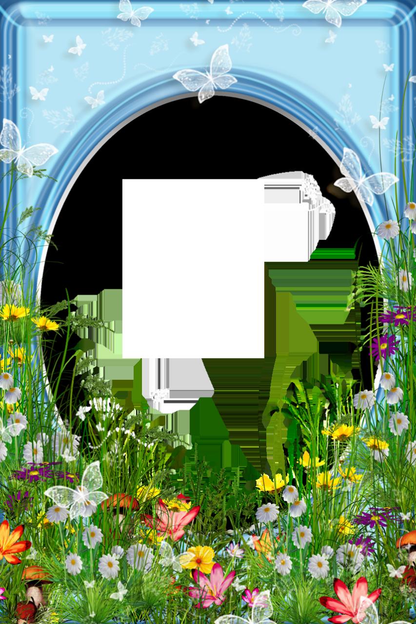 frame png image transparent background พ นหล ง กรอบร ป ดอกไม www pinterest ph