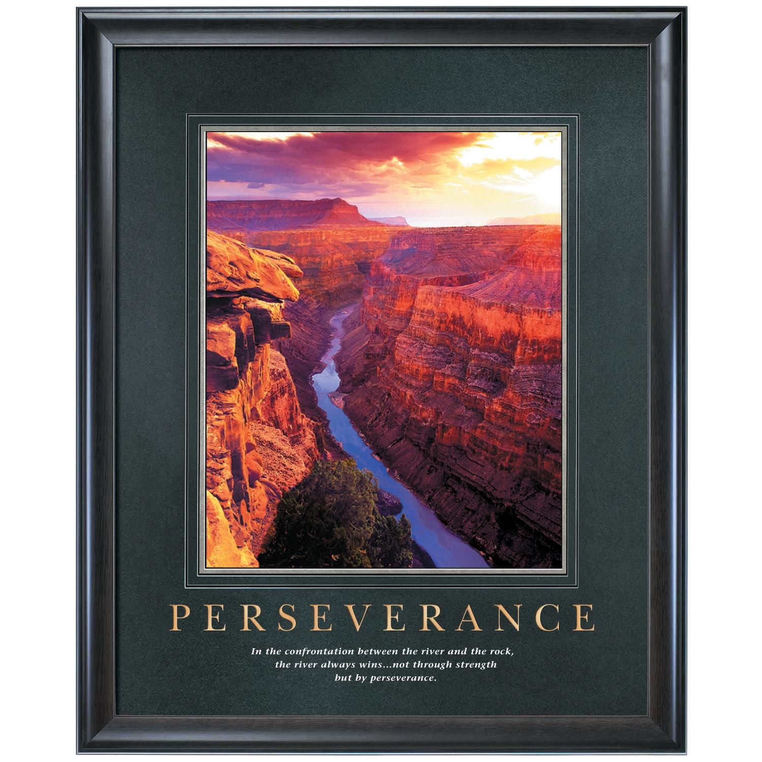 Persistence Motivational Quotes: Perseverance Motivational Poster