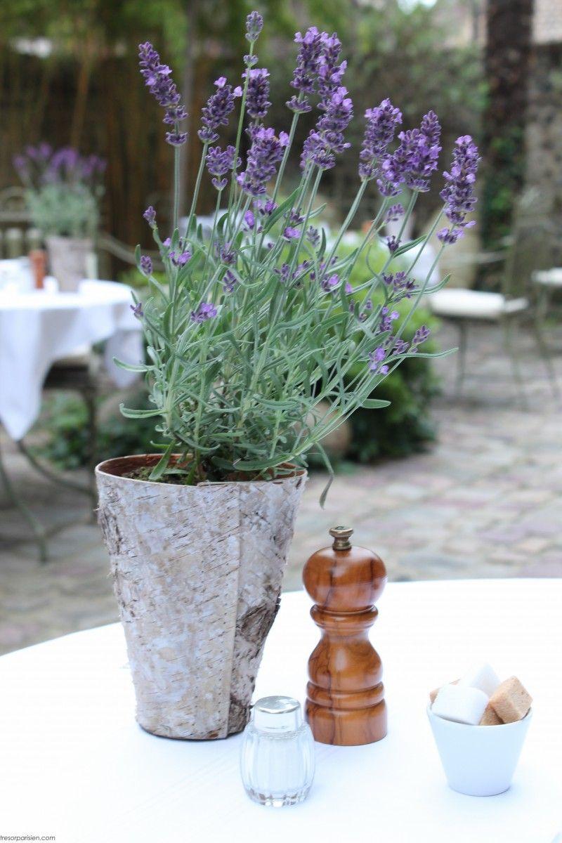 Summer table in Honfleur, France ~ photo copyright: tresorparisien