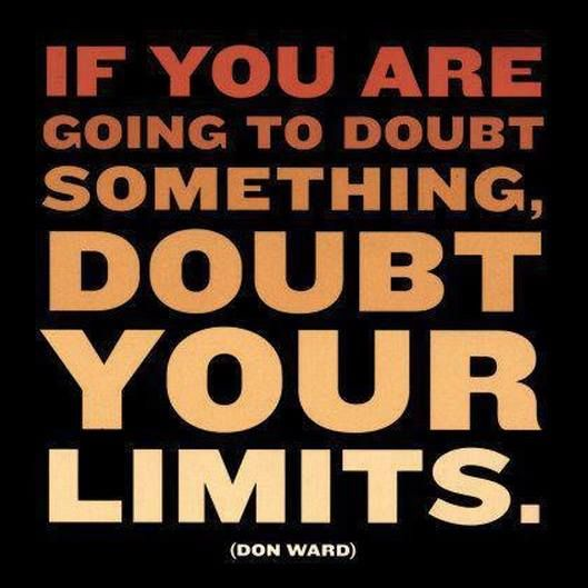 """""""If you are going to doubt something, doubt your limits!""""  """"Nothing worthwhile was ever achieved by a single person withdrawn from humanity.  We're in this together.""""  ★•★•★"""