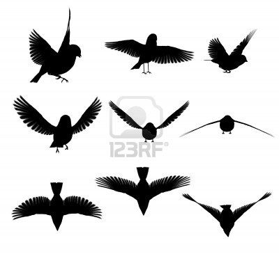 L Oiseau De Ciel Magritte Silhouette Oiseau Magritte Oiseaux