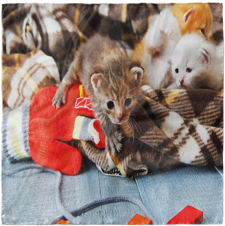 Cats Kittens Mittens Baby Toys Bandana Head Scarf Hair Wrap Hijab Scarf In 2020 Kitten Mittens Hijab Scarf Bandana Scarf