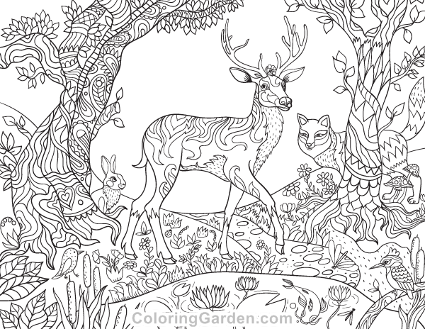 Free Printable Forest Creatures Adult Coloring Page The Pages Includes Trees And Animals Such As A Deer Birds More